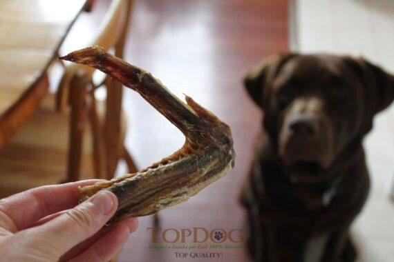 Ali di anatra secche per cani