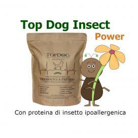 Top Dog Insect Power