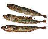 pesce secco per cani