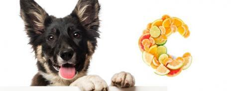 Integratori per Vitamine e Minerali
