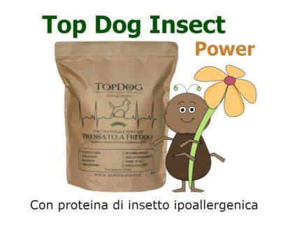 crocchette per cani agli insetti