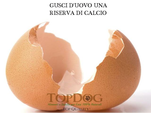 Gusci di uova polvere per cani