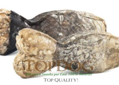 osso-per-cani-merluzzo