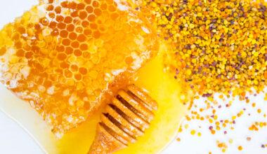 polline d'api per cani