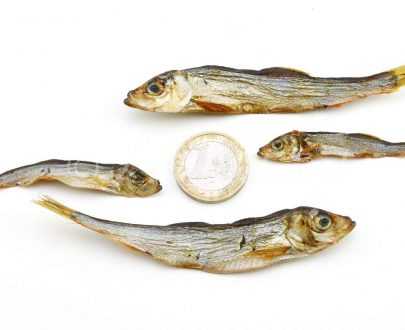 pesci-essiccati-per-cani